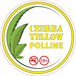 Polline Yellow – Ceerba